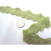 Indian Sage Stretch Lace