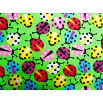 Colourful Lady Bugs
